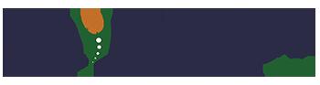 Chirowebs – Creator of custom Chiropractic and Entrepreneur Websites Logo